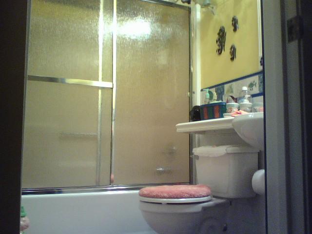 name glass doorsguest bathjpg views size 715 kb