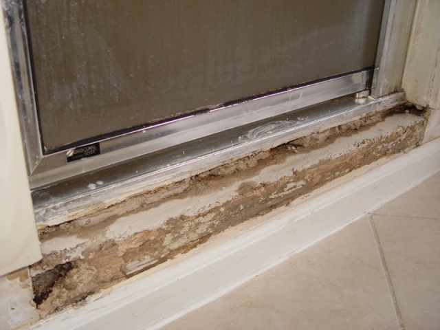 Shower Door And Curb