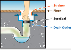 Toilet Flange As Floor Drain Trap