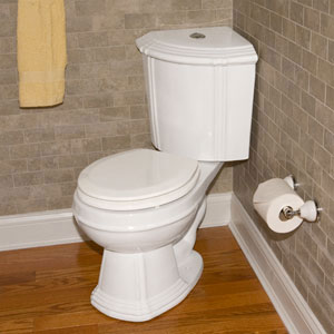 looking to convert to wall mounted toilet or other