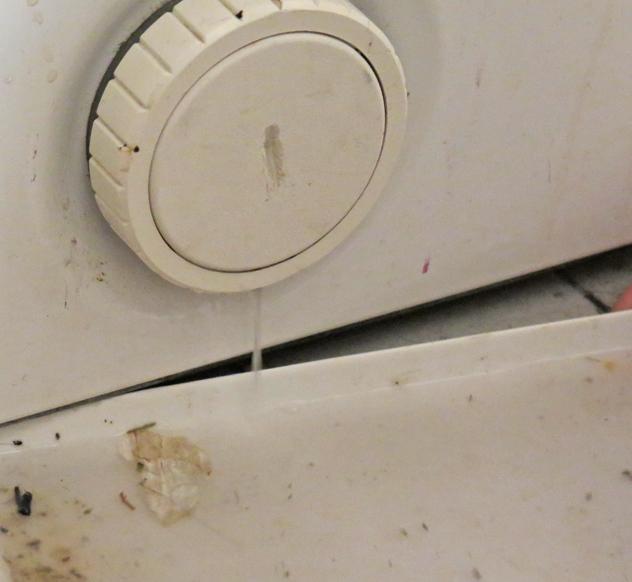 washing machine leak